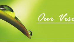 our-vision-banner